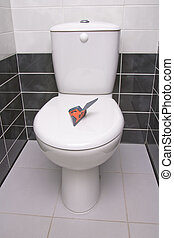 Plane in the toilet