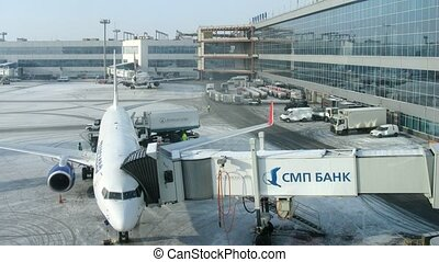 Plane stands in territory near the terminal of Domodedovo airport