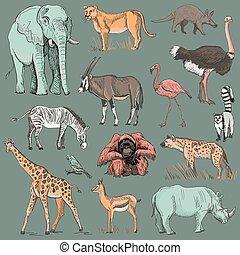 planeet, getrokken, dier, illustratie, hand