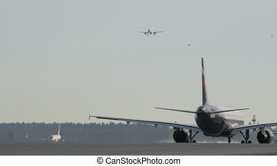 Planes preparing to take off and landing - Wide shot of a...