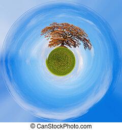 Planet of alone orange autumn tree on a green field