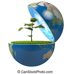 planet, pflanze, innenseite