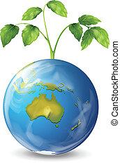 planet, växande, växt, grön värld