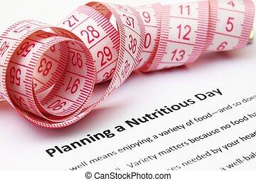 planificação, um, nutritivo, dia