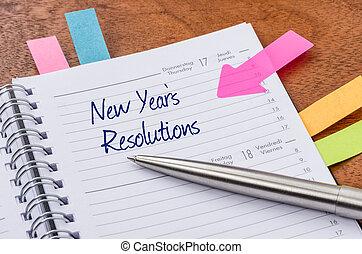 planificador diario, con, el, entrada, año nuevo,...