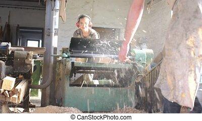 planification, charpentiers, équipe, utilisation, bois, machine