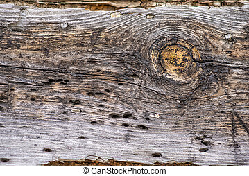 plank of an old frame house