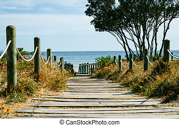 Plank path leading to beach