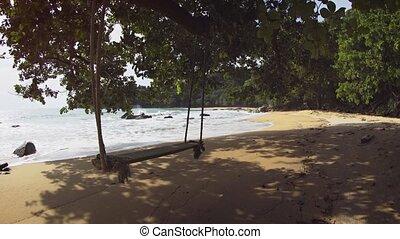 Plank Swing beneath a Shade Tree on Phuket Tropical Beach -...