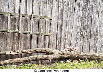 plank wooden wall
