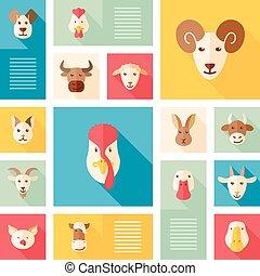 plano, animales, colorido, iconos, granja, largo, sombra
