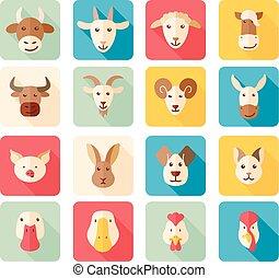 plano, animales, iconos, granja, largo, sombra