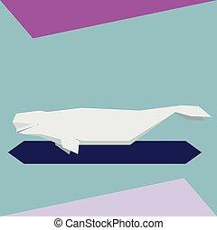 plano, ballena, beluga, diseño