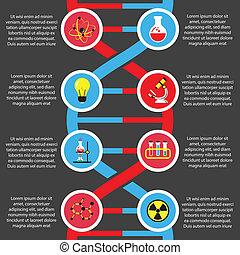 plano, biología, química, o, infographics