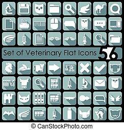 plano, conjunto, veterinario, iconos