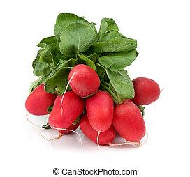 plano de fondo, aislado, rábano, blanco rojo