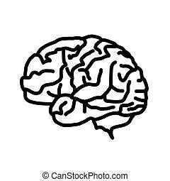 Plano de fondo, blanco, icono, aislado, cerebro