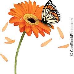 plano de fondo, con, hermoso, flor roja, con, butterfly., vector