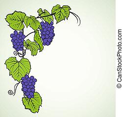 plano de fondo, con, uvas
