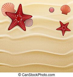 plano de fondo, conchas marinas, arena