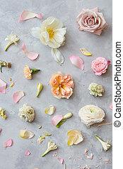 plano de fondo, de, flores