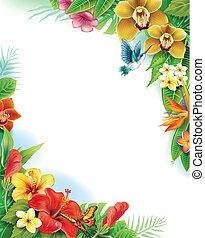 plano de fondo, de, flores tropicales, y, hojas