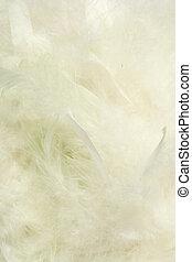 plano de fondo, de, velloso, cremoso, anuble que quiere, plumas