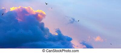 plano de fondo, dramático, resumen, celeste, luz