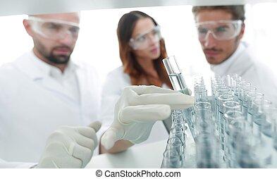 plano de fondo, imagen, es, un, grupo, de, científicos, estudiar, el, líquido, en, el, vidrio, tube.