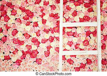 plano de fondo, lleno, de, blanco, y, rosas rosa