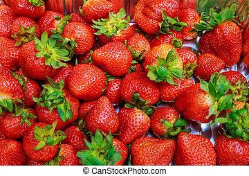 plano de fondo, recientemente, cosechado, directamente, fresas, sobre