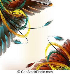 plano de fondo, vector, plumas