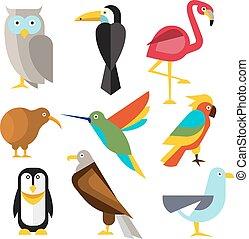 plano, estilo, conjunto, ártico, bosque tropical, salvaje, aves