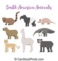 plano, estilo, conjunto, animales, america., vector, sur