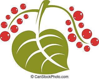 plano, hoja, botánica, estación, aislado, símbolo, fondo., solo, vector, verde, primavera, herbario, natural, blanco, semillas, icon., rojo