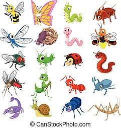 plano, insecto, diseño determinado, caricatura