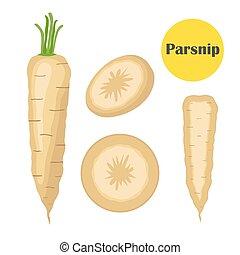plano, orgánico, vegetariano, chirivía, comida., catroon, ...