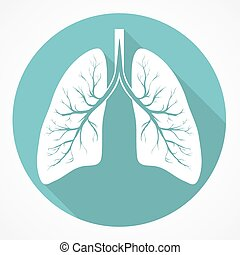 plano, pulmón, humano, icono