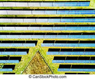 plant., 空気の写真, 太陽エネルギー