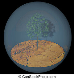 Plant and ground in a bubble