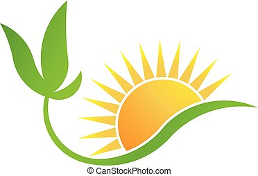 plant, bio-solar, zon, energy., vector, groene, logo
