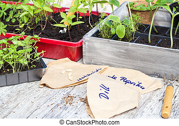 Plant breeding, seedlings