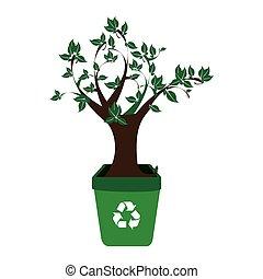 plant, container, kleurrijke, recycling, boompje, leafy