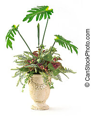 Plant decoration in clay pot