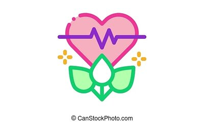 plant for restoration of heart Icon Animation. color plant for restoration of heart animated icon on white background