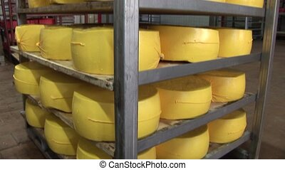 Plant for the production of cheese. cheese packaging
