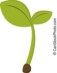 Plant from earth, illustration, vector on white background.