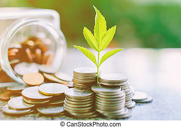 Plant growing from coins outside the glass jar on blurred green natural background