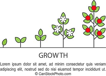 Seed stage startup Clipart Vector and Illustration  16 Seed