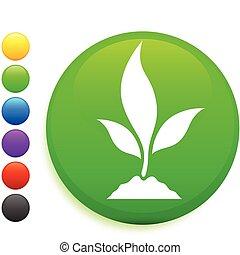 plant icon on round internet button